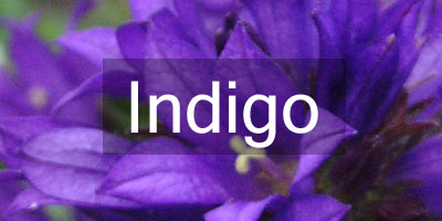 Colours-Indigo