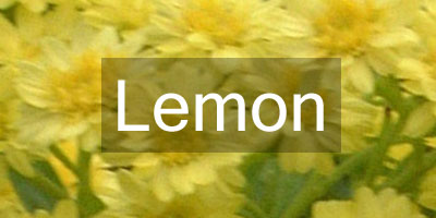 Colours-Lemon
