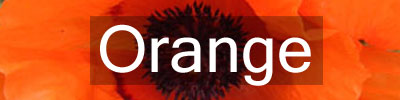 Colours-Orange