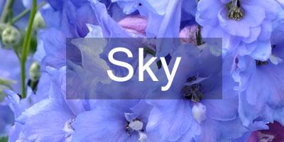 Colours-Sky