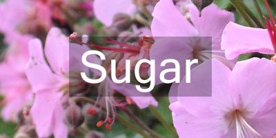 Colours-Sugar
