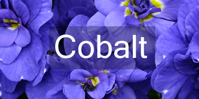 Colours-Cobalt