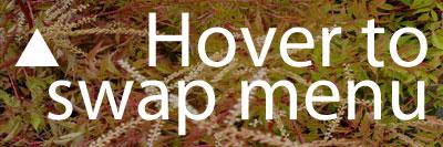 Hover to swap menu